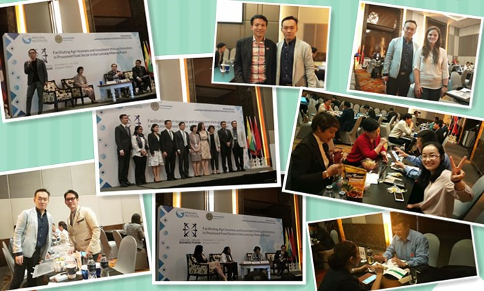 LANCANG-MEKONG Business Forum About Snacks Extrusion Machine Was Held