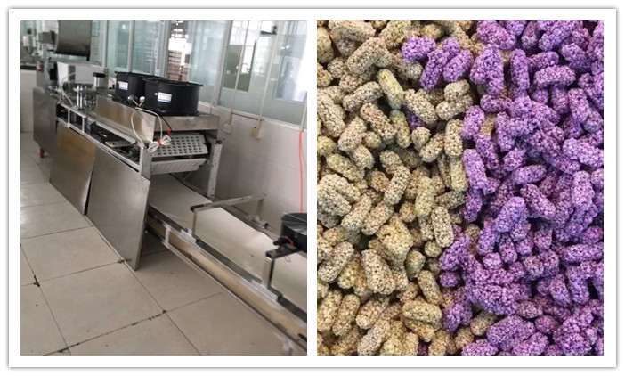 Cereal Bar Forming Machine Is Installed