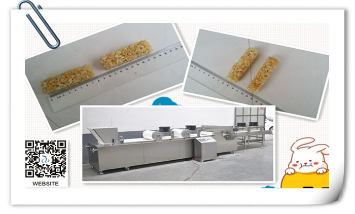 A Successful Test Running On Muesli Bar Cutting Machine