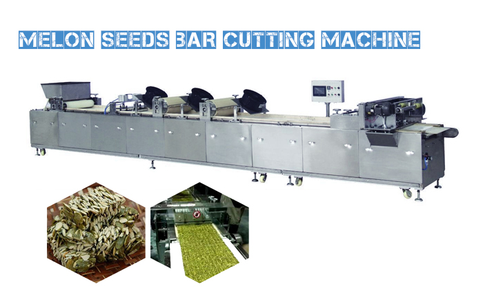 Melon Seeds Bar Cutting Machine Is Installed